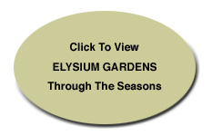 Click to VieElysium Gardens Through the Seasons